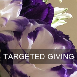 Targeted Giving logo