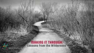 Making it Through: Lessons from the Wilderness